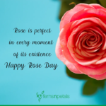 Rose Day Quotation