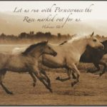 Running Horse Quotes Facebook