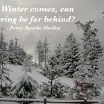 Sad Winter Quotes