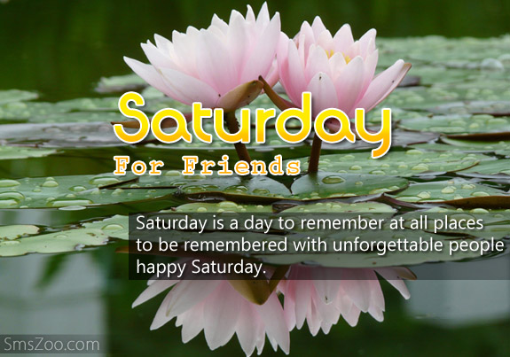 Saturday With Friends Quotes