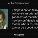 Schopenhauer Quotes Animals Tumblr