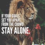 Success Alone Quotes Facebook