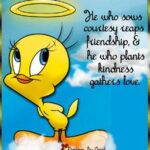 Sylvester And Tweety Quotes