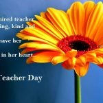 Teachers Day Wishes With Quotes Tumblr