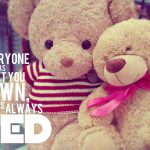 Teddy Bears With Sayings Pinterest