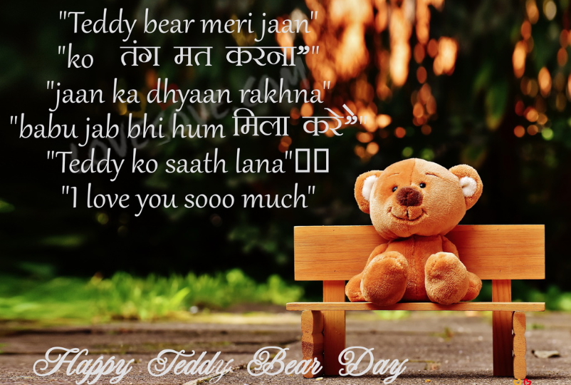 Teddy Day Status In Hindi