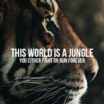 Tiger With Quotes Tumblr