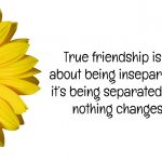 True Friend Quotes That Make You Cry Tumblr