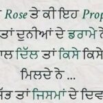 Valentines Day Quotes In Punjabi Tumblr