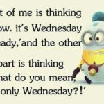 Wednesday Humor Quotes Facebook