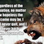 Wolf Life Quotes