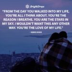 Your The Love Of My Life Quotes